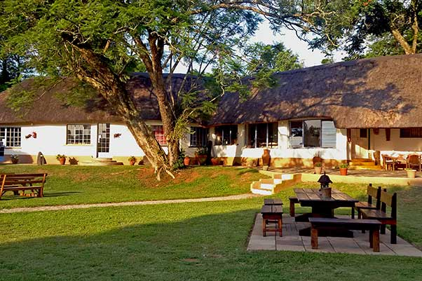 Thokozani Lodge am Krüger NAtionalpark (KNP)