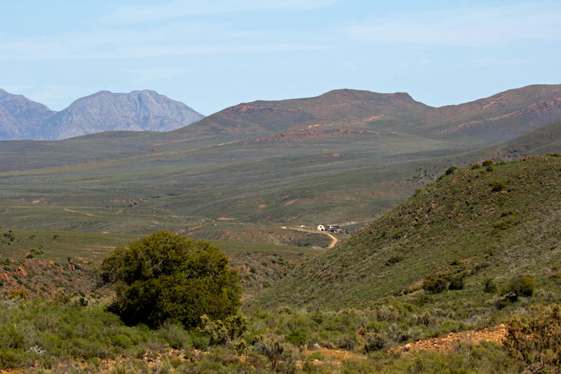 White Lion Lode in der Karoo